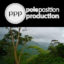Costa Rica Jungle & Rainforest